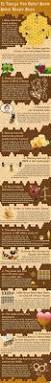 origin of the word love best 25 honey bee farming ideas on pinterest beekeeping bee