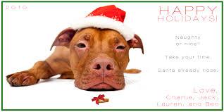 dogs christmas cards christmas lights decoration