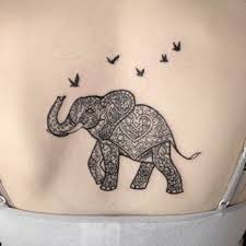 best 25 elephant tattoo design ideas on pinterest elephant