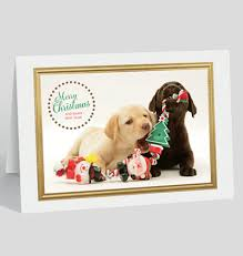 happy new years cards the gallery collection