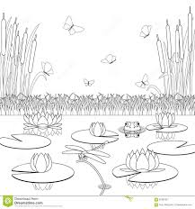coloring page with pond inhabitants and plants stock photo