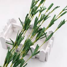 Home Decoration Plants by Compare Prices On Decorative Dried Plants Online Shopping Buy Low