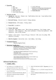 Resume Biodata Sample by Seo Expert Resume Biodata Curriculum Vitae