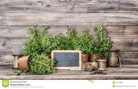 kitchen herbs with vintage home decorations food ingredients