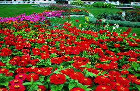 beautiful gardens wallpapers wallpapersafari