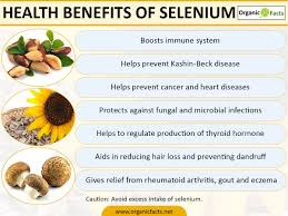 selenium benefits and side effects organic facts