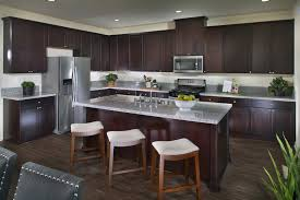 Rsi Kitchen Cabinets Welcome To Augusta New Homes In California