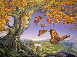 josephine wall butterfly tree