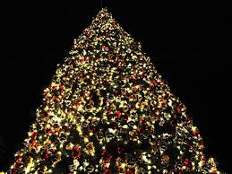 free christmas lights branson mo christmas tree competition introduced to encourage area holiday