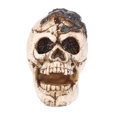 3d home skull with scorpion ornament resin skull
