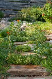 Alternatives To Grass In Backyard by A Round Rock Garden A Garden Is The Best Alternative Therapy