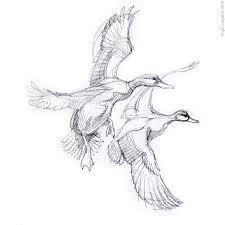 211 best birds in art images on pinterest mallard bird