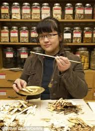 chinese herbal medicine slows the development of type 2 diabetes