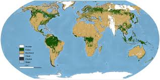 The Forest Map Researchers Create Global Map Of World U0027s Forests Circa 1990