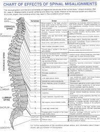 Foot Pain Map Back Nerves Anatomy Choice Image Learn Human Anatomy Image
