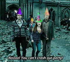 Harry Potter Birthday Meme - harry potter images draco malfoy s birthday funny wallpaper and