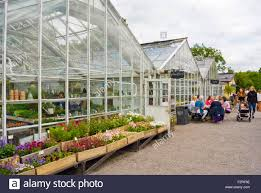 Flower Shops by Greenhouses Housing Flower Shops And Lunch Time Restaurant Stock