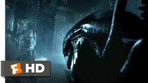 alien vs predator halloween horror nights alien vs predator wallpapers sci fi hq alien vs predator