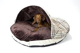 Ebay Bunk Beds Uk Beds For Dogs Uk Bunk Beds Beds Uk Ebay Govegan Me