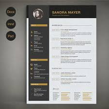 best resume templates 107 best most professional resume templates images on