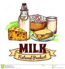 milk product sketch concept stock vector image 56858006