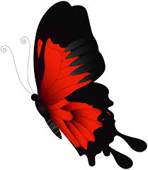 red flying butterfly png clip art gallery yopriceville high