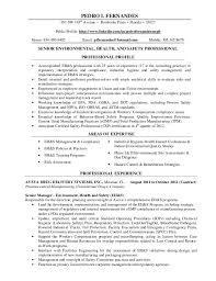 professional resumes professional hr resumes templates franklinfire co