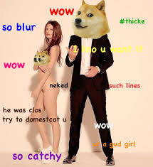 Such Doge Meme - robindoge such doge wow pinterest doge and humor