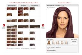 esalon hair color reviews with pictures esalon custom formulated hair color review