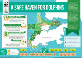 Zhuhai China Map by Protecting Chinese White Dolphin Wwf Hong Kong