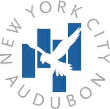 d bird nyc audubon bird mortality database