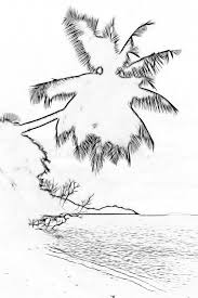 stylized silhouette of palm on a tropical beach outline sketch