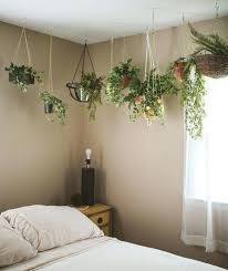 best plants for bedroom plant bedroom a bedroom plants oxygen portalsmo club