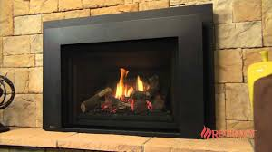 gas insert fireplace with blower cpmpublishingcom