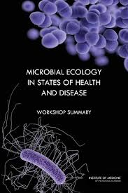 Diseases In Plants And Animals - fungal diseases an emerging threat to human animal and plant