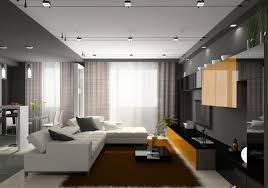 Apartment Lighting Ideas Decorations Minimalist Apartment Living Room With Horizontal