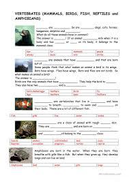animals vertebrates and invertebrates worksheet free esl