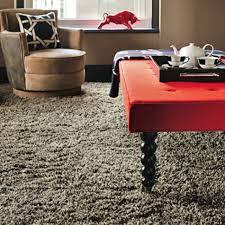 best 25 frieze carpet ideas on pinterest new carpet carpet for