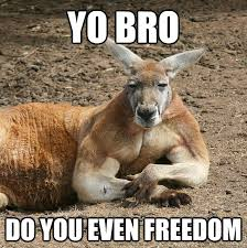 Yo Bro Meme - yo bro do you even freedom kangaroo bro quickmeme