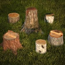 tree stumps collection 3d model cgtrader