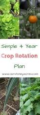 a simple 4 year crop rotation plan stoney acres