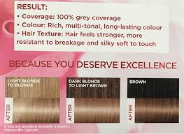 loreal hair color chart ginger l oreal excellence creme in 8 1 natural ash blonde 30somethingmel