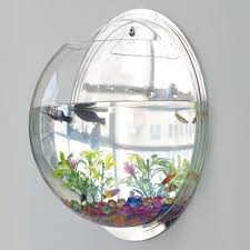 Aquarium For Home Decoration Amazon Com Wall Hanging Fish Bowl Fish Tank Water Plant Vase