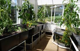 solar greenhouse designs and kits ceres greenhouse