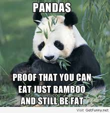 Funny Panda Memes - proof with panda funny pictures funny quotes funny memes