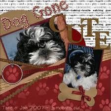 dog scrapbook album 396 best scrapbooking s best friend images on