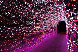 beautiful christmas color cute lights image 243526 on favim com