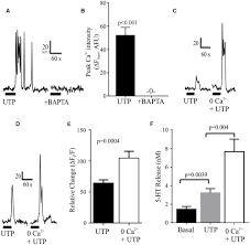 frontiers utp u2013 gated signaling pathways of 5 ht release from