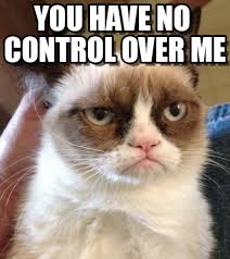 Grumpy Cat Meme No - you have no control over me grumpy cat reverse meme on memegen