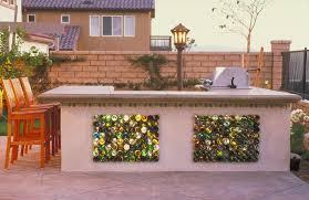 backyards go green environmentally conscious tips for your